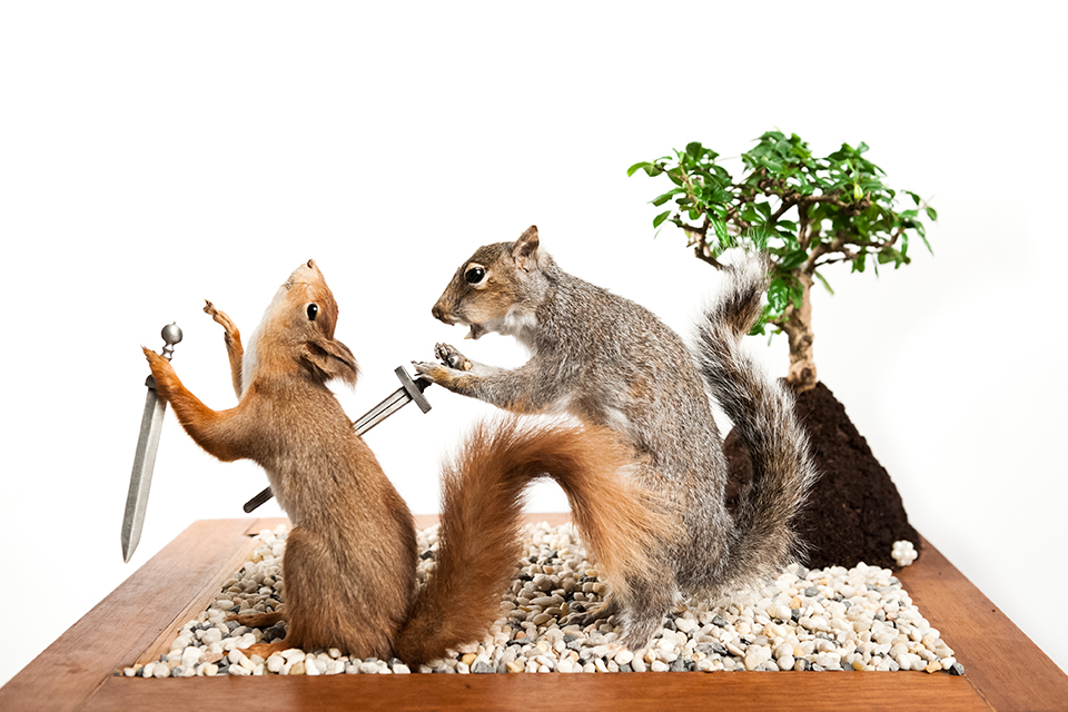 knife-taxidermy-squirrel